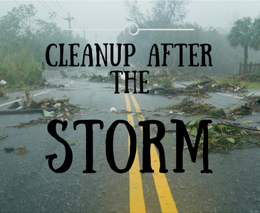 Cleanup Storm